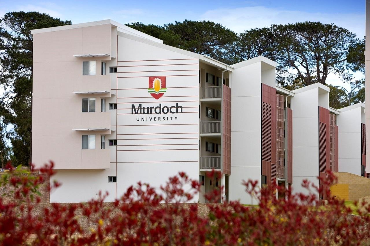 Đại học Murdoch thuộc top đầu tại Úc cho mức lương khởi điểm của sinh viên
