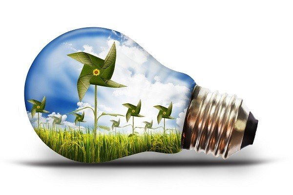 Ngành Khoa học môi trường là gì? Bạn học được gì tại Đại học Deakin Úc